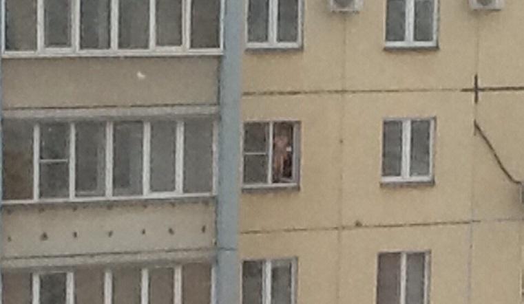 Швырял посуду. Ребенок в окне 6 этажа напугал челябинцев