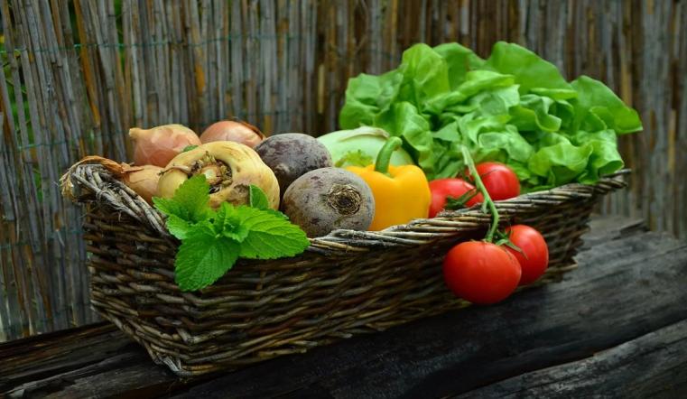 Легко выращивать и хранить. Топ 5 неприхотливых овощей, которые не оставят голодными