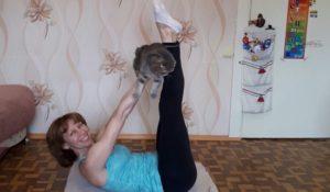 Медитируем и остаемся в форме: как заменить спортзал одним котом