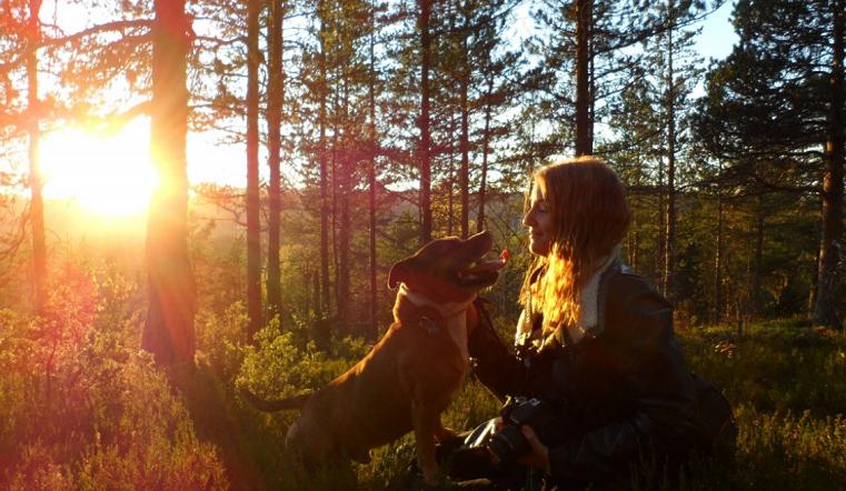 Незаметные враги. Как защитить собак от клещей во время прогулки