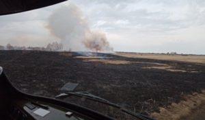 Горим. Первые лесные пожары тушат на Южном Урале