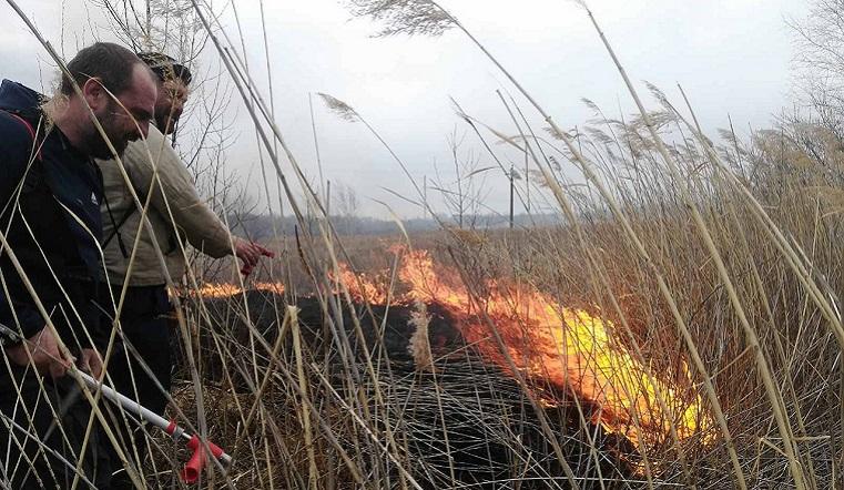 Реальная угроза. Пожар вблизи деревни на Урале испугал жителей