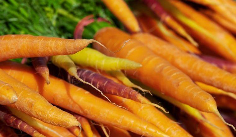 Календарь садовода на 2020 год. Когда сажать лук, морковь и огурцы