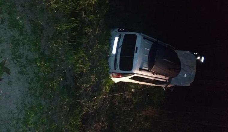 Кровавое ДТП: лось сбил легковушку на трассе М5 «Урал» ФОТО