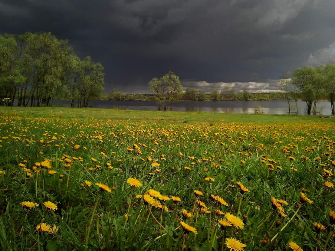 «Обвал жары». Синоптики предупредили о резкой смене погоды в Челябинской области