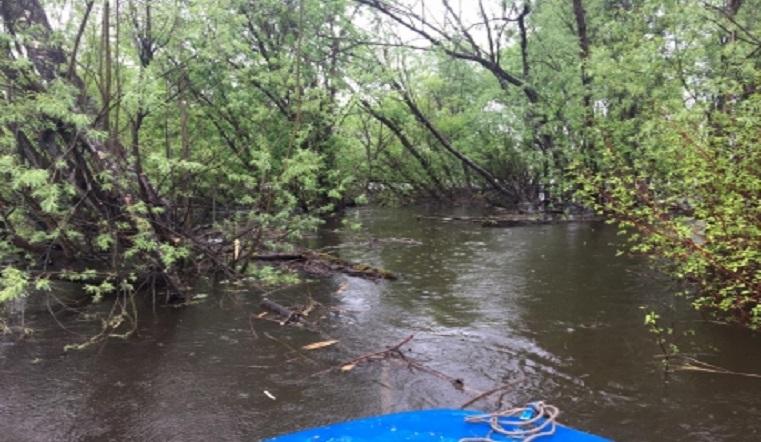 Смертельный сплав. На Урале 1 человек утонул, 5 чудом выжили, зацепившись за дерево