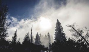 Погода в Челябинске. Заморозки идут на Южный Урал