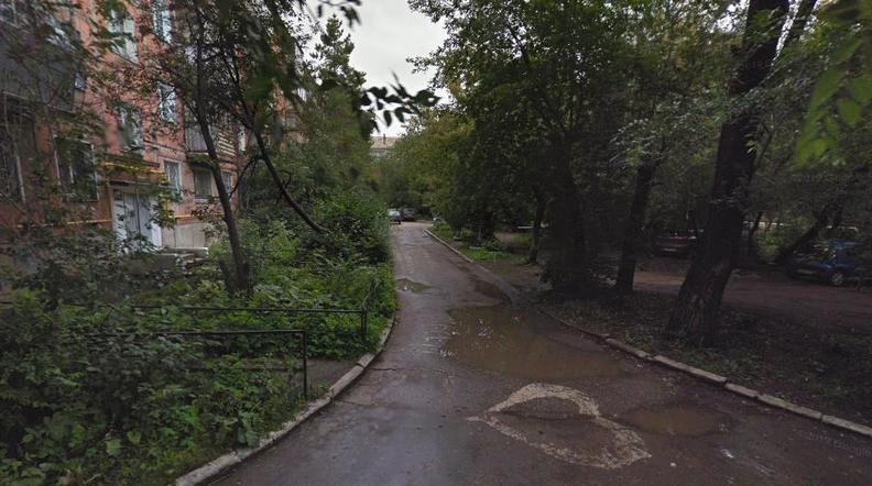 «На 3 этаж умудряются запрыгивать». Жителей Урала атакуют блохи