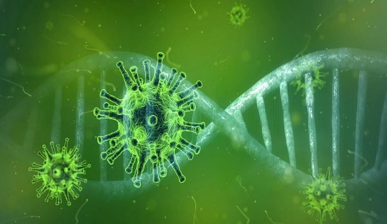 Быстро меняется. О новых мутациях коронавируса рассказали ученые