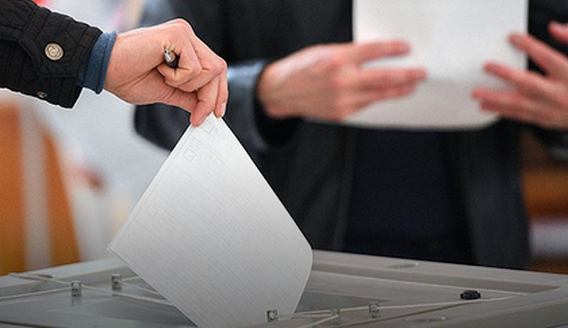Депутаты Госдумы из Челябинской области приняли участие в голосовании по поправкам в Конституцию