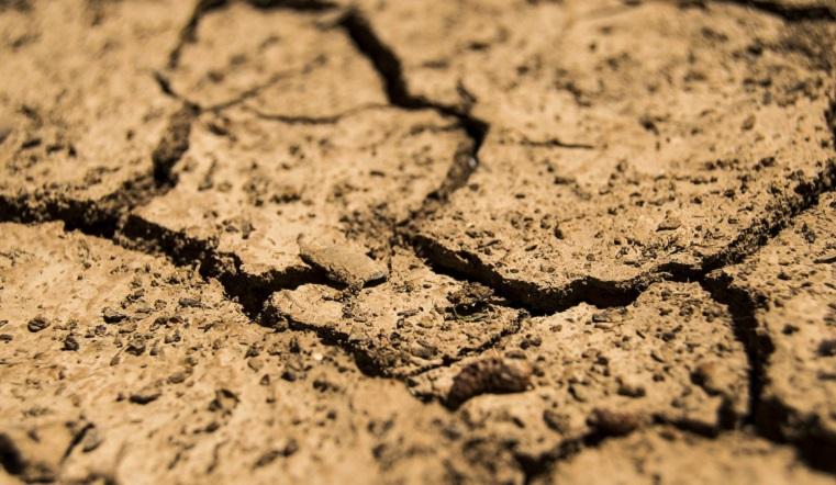 Подсчитывают убытки. Губернатор Текслер обсудил с аграриями господдержку из-за засухи