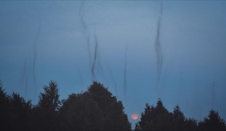 «Мошки апокалипсиса». Жителей Урала испугали в небе гигантские воронки из насекомых