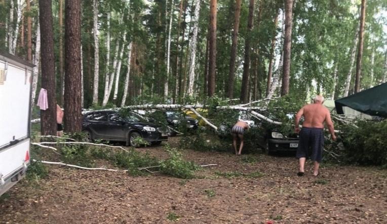 Шторм повалил деревья и согнал отдыхающих с пляжей в Челябинской области