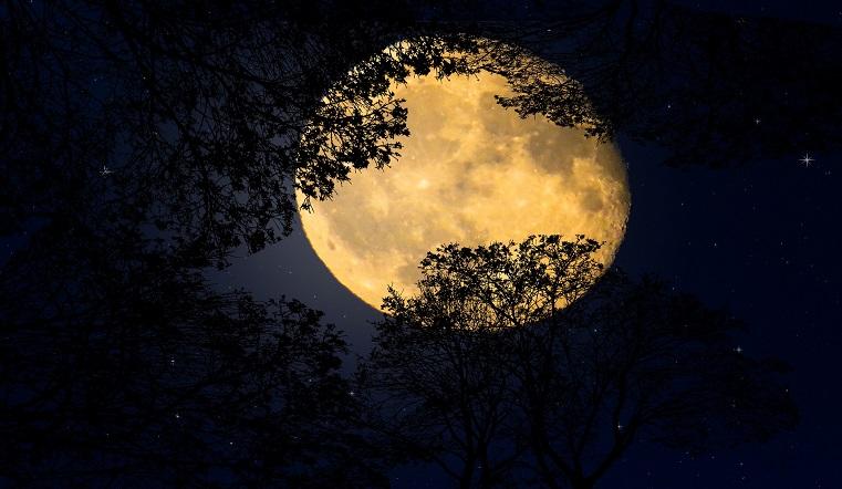 Полнолуние 2020.Чего ждать от Осетровой Луны в августе