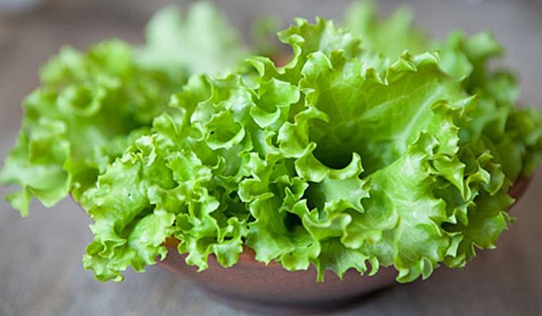 Салат с бактериями. Сальмонеллы научились проникать внутрь растений Фото: newsgomel.by