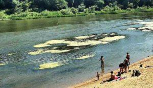 На грани катастрофы. В Челябинской области стремительно мелеют реки
