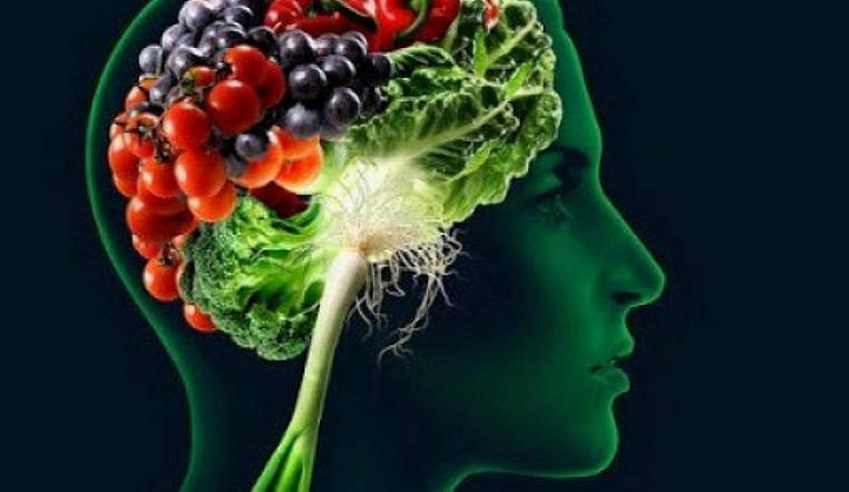 Незаменим для мозга. Ученые нашли продукт, который повышает способности к обучению