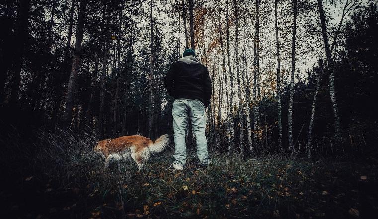 Ушла за грибами. В Челябинской области 4 сутки идут поиски пенсионерки, потерявшейся в лесу