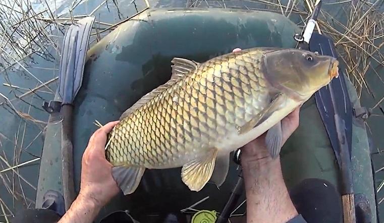 «Можно смотреть вечно». Рыбалку «изнутри» показали жители Челябинской области