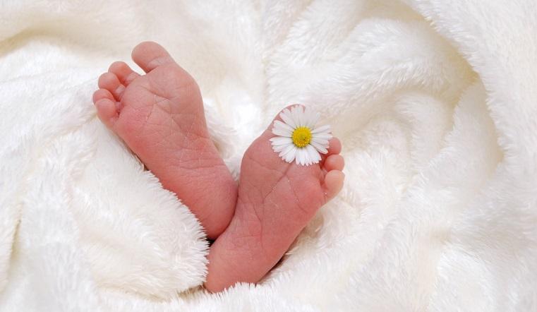 Близнецовый бум. В Челябинской области установлен рекорд по рождению двойняшек