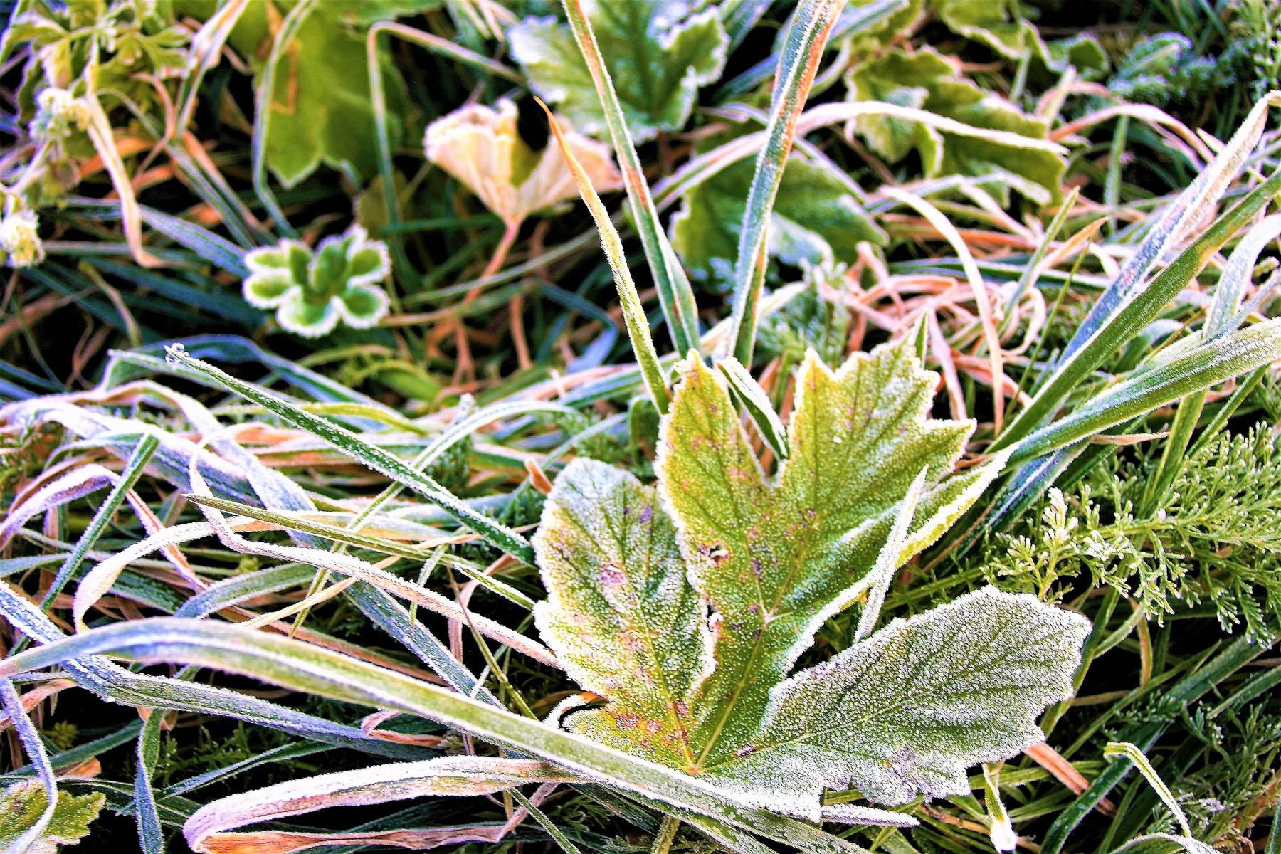 Холодно до жути. В Челябинской области обещают первый снег и –2 °С