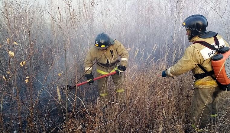 Разошелся на километры. Крупный лесной пожар вспыхнул в Челябинской области