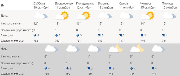 Назад в лето. Погода в Челябинске сегодня. Погода в Екатеринбурге сегодня