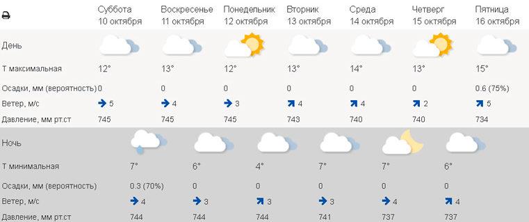 Назад в лето. Погода в Екатеринбурге сегодня. Погода в Челябинске сегодня