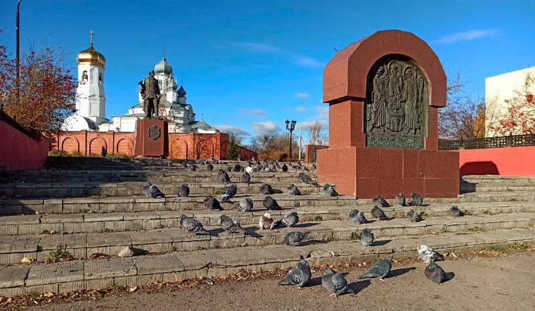 «Крысы с крыльями». На Урале десятки птиц собрались на массовую встречу