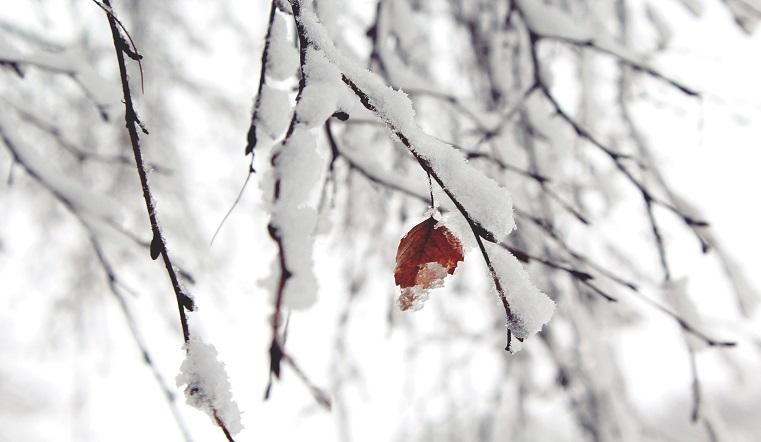 Погода сошла с ума. Синоптики удивили жителей Урала новым прогнозом