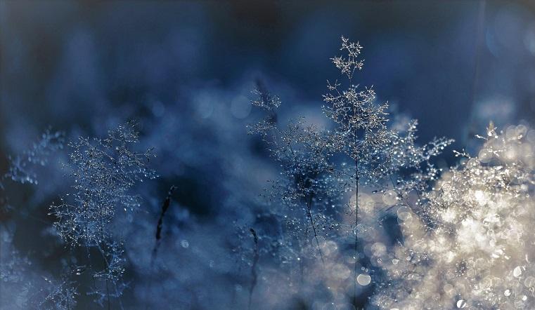 Уходим в плюс. В конце осени в Челябинской области ожидается внезапное потепление