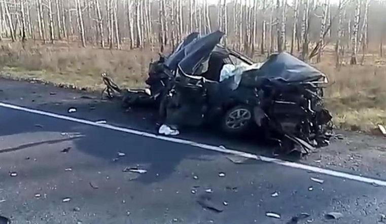 Толкнул под фуры. Житель Челябинской области устроил ДТП с 2 погибшими на трассе М5 ВИДЕО
