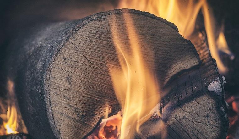 Тепло на всю зиму. Волонтеры закупили дрова для приюта бездомных