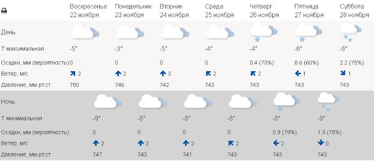 Гадкий ноябрь: мощные снегопады испортят настроение жителям Урала. Погода в Екатеринбурге сегодня