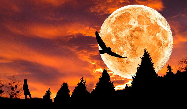 Лунный календарь на 27 ноября. Что нельзя делать — 5 жестких запретов