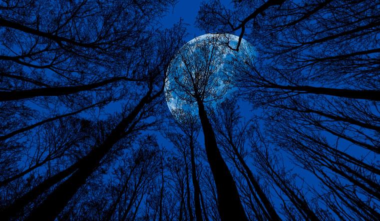 Снова метеорит? Светящийся шар в небе испугал жителей Урала. Метеоры, метеорный поток