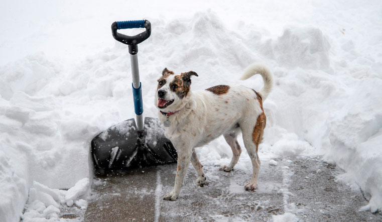 Гадкий ноябрь: мощные снегопады испортят настроение жителям Урала