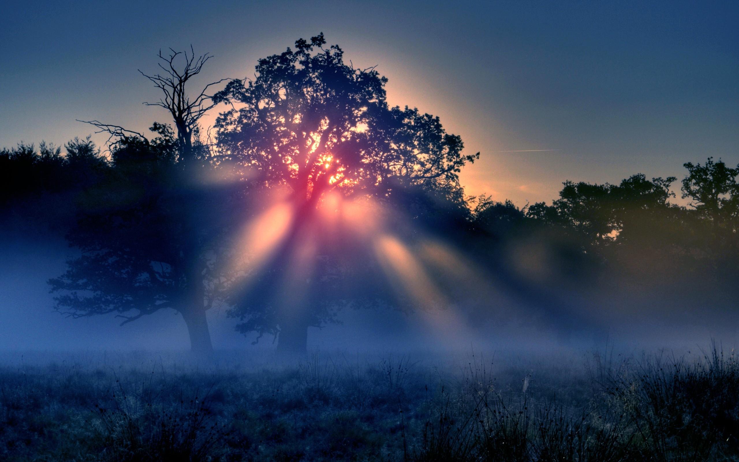 Приметы на 5 ноября. Самый темный день: традиции и обряды на удачу
