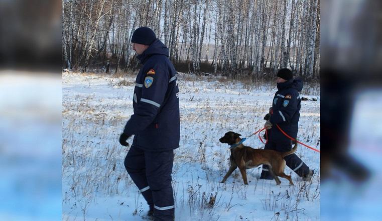 Ищут 2 дня. В лесу в Челябинской области пропал 80-летний мужчина