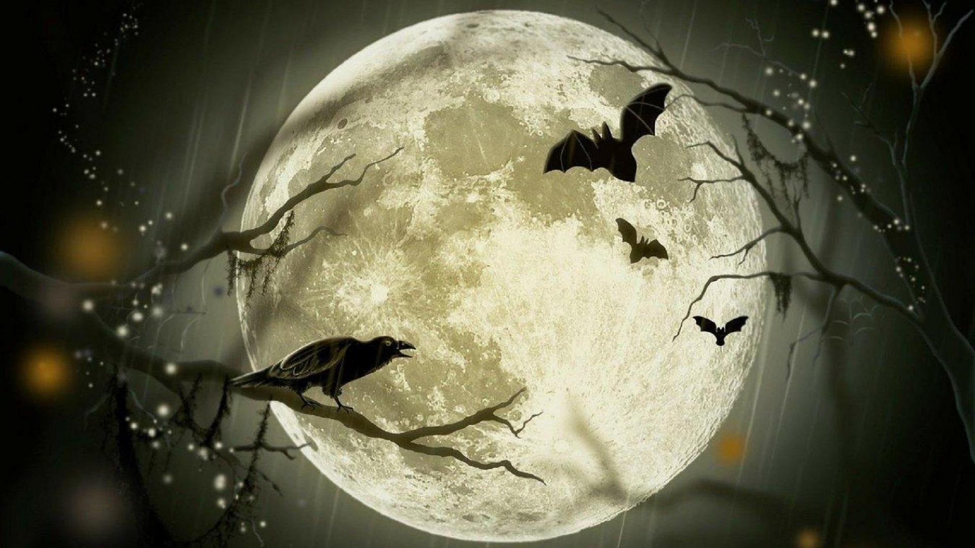 Лунный календарь на 11 января. Убывающая Луна - день хаоса и разрушения