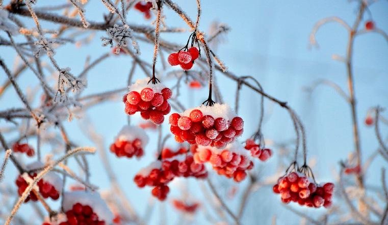 Перепад в 29 градусов. Погода в Челябинске в декабре готовит новый сюрприз