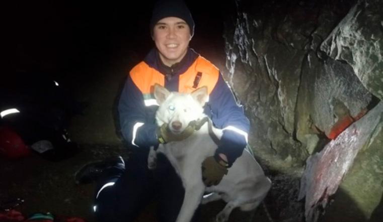 Чудесное спасение. В Челябинской области подняли собаку с 13-метровой глубины