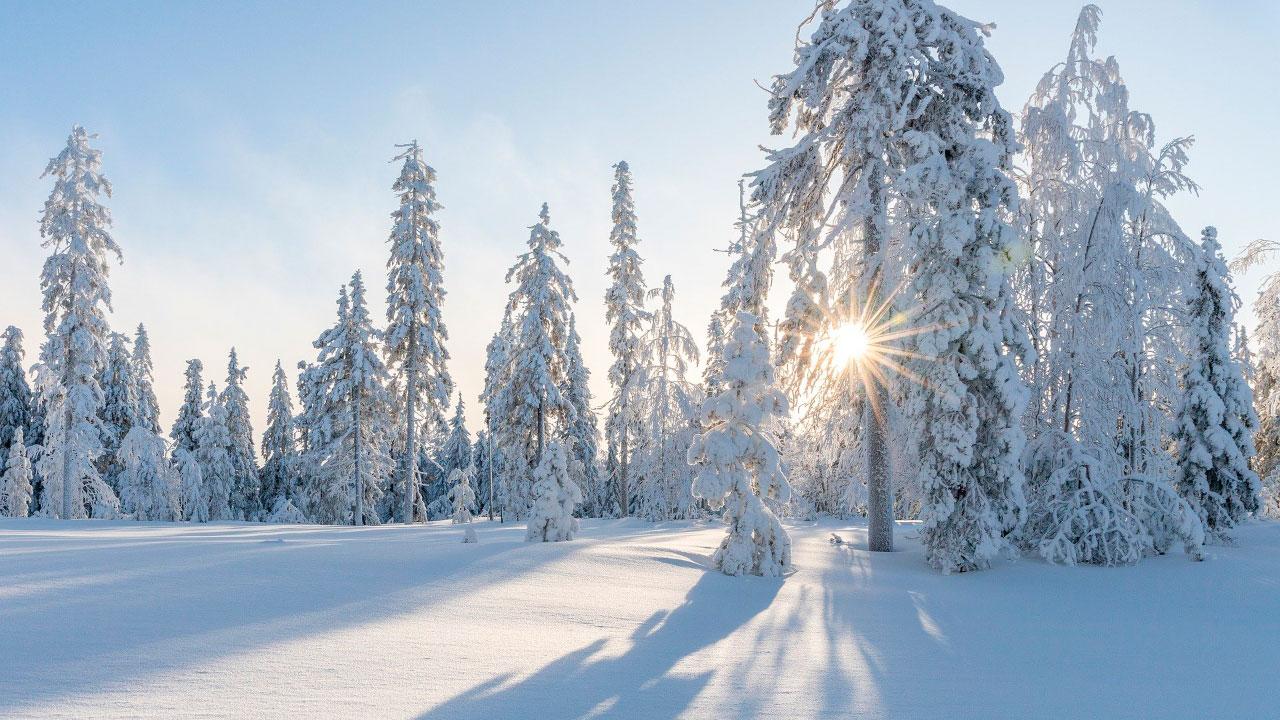 В Челябинской области похолодает до экстремальных -36 °C