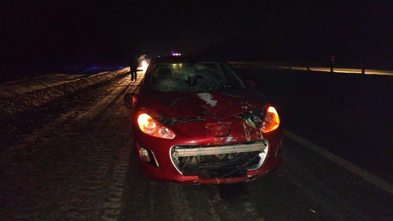 Пешехода сбили насмерть на южноуральской трассе