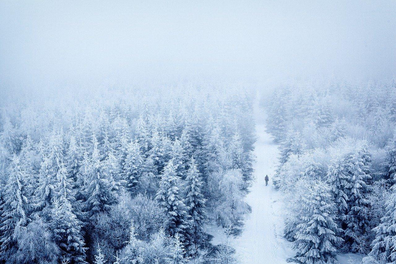 Афанасьевские морозы: где в России ожидается -40 °C