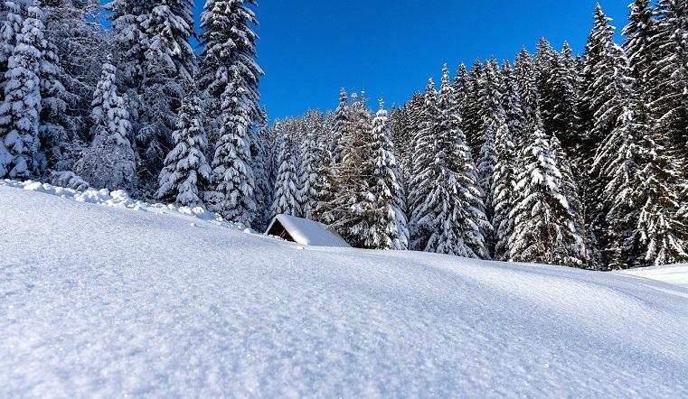 Снегопад и высокое давление. Какая будет погода в Челябинской области