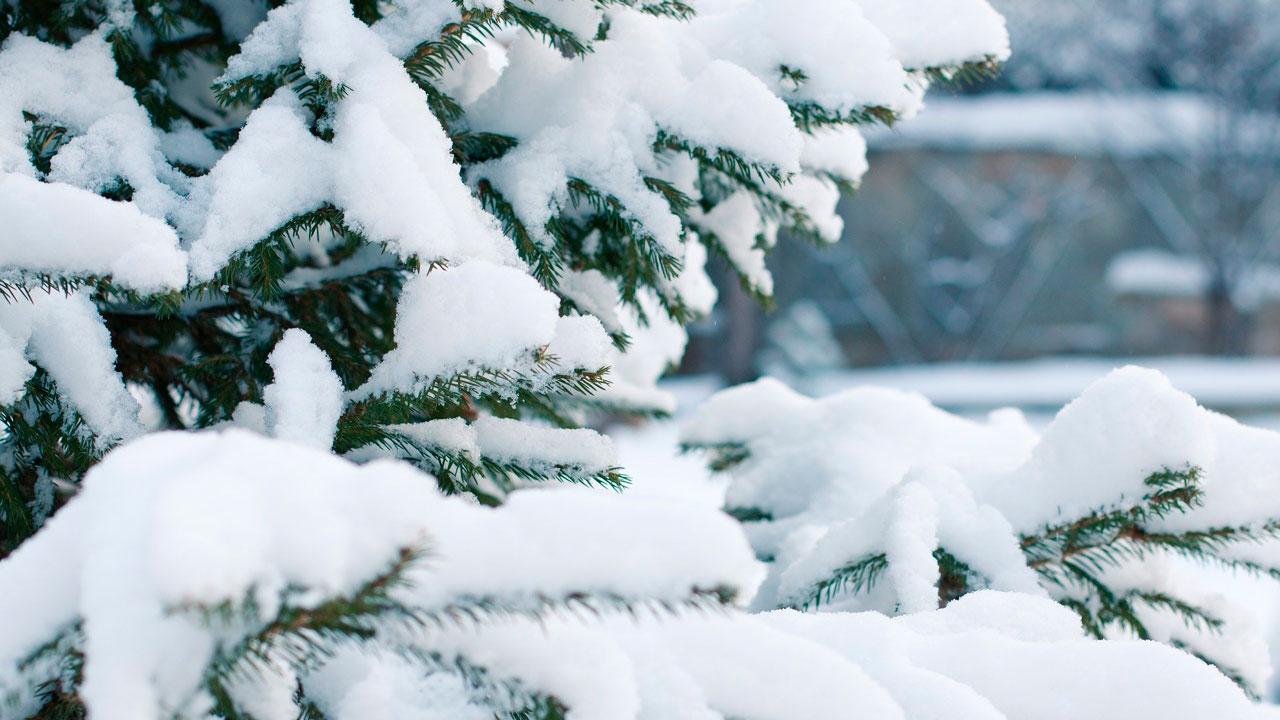 Вторая волна: Челябинскую область накроют морозы под -30 °C