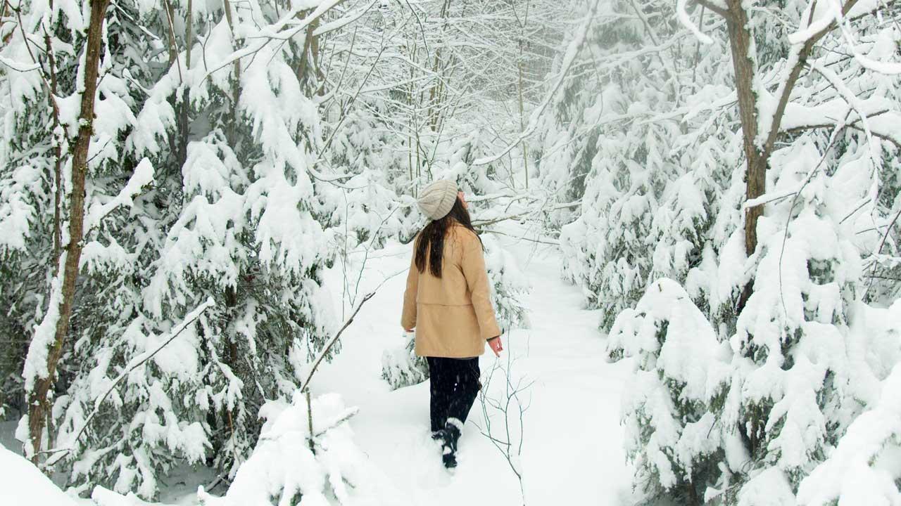В Челябинской области прогнозируют метели и резкое потепление