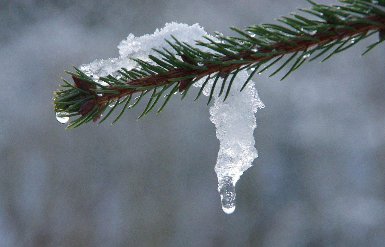 Погода в Челябинске: удивительный прогноз составили синоптики