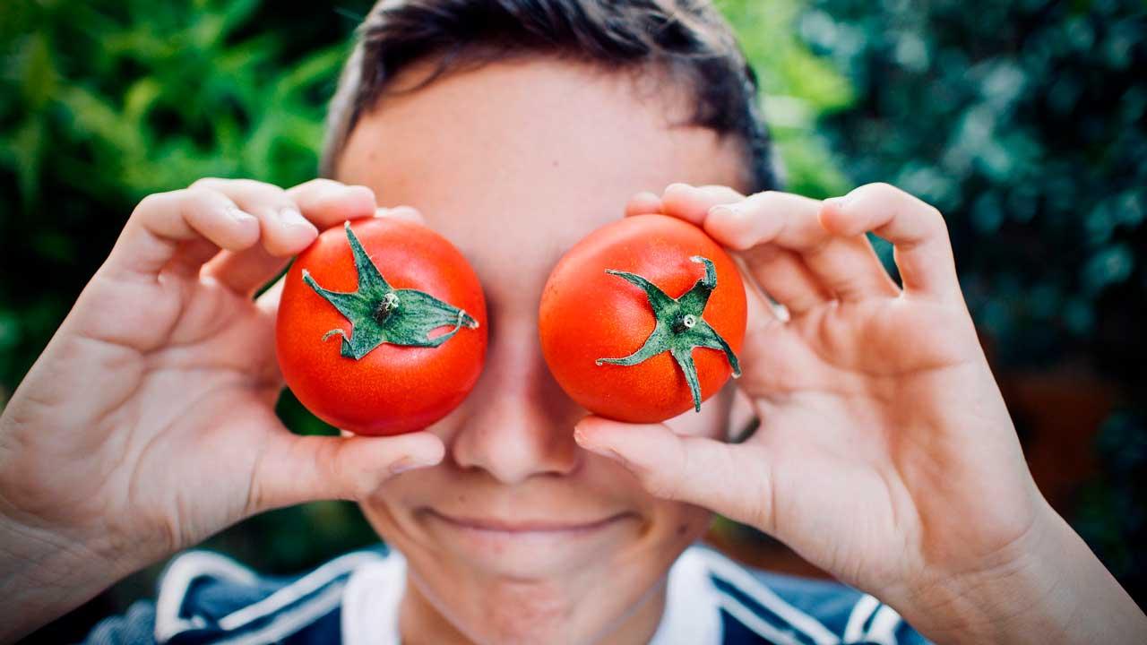 Чем полезны помидоры: свойства, которые могут удивить
